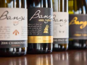 Bangor selection of wine, Chardonnay, Pinot Noir, Pinot Gris, Riesling, Sparkling.