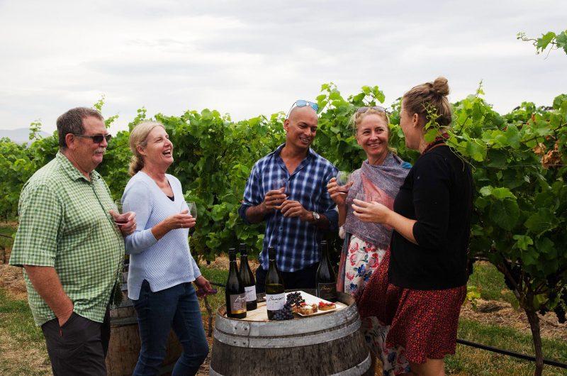 Wine in the Vines - Bangor Vineyard Tour