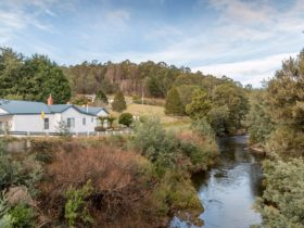 Barbara's Cottage on the Ringarooma River Branxholm TAS