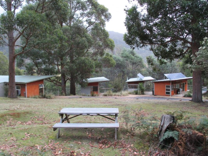 L-R Family Cabin , Bunkhouse, Amenities, Kitchen