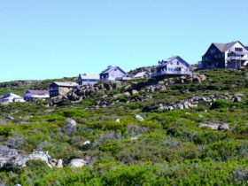 The Ben Lomond village during summer.