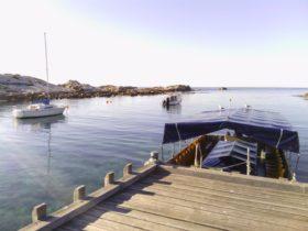 Bicheno's Glass Bottom Boat