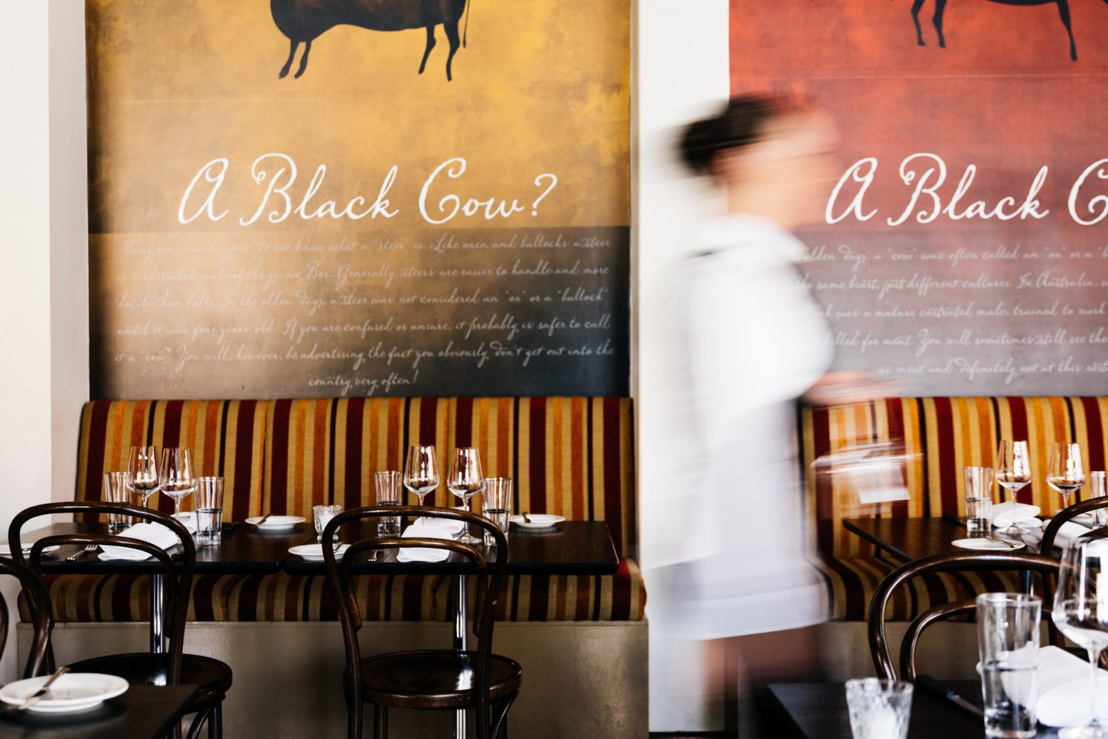 Black Cow Bistro Launceston Tasmania Restaurant
