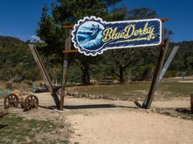 BlueDerby Trailhead, Derby, North East Tasmania. (Image Courtesy of Wade Lewis)