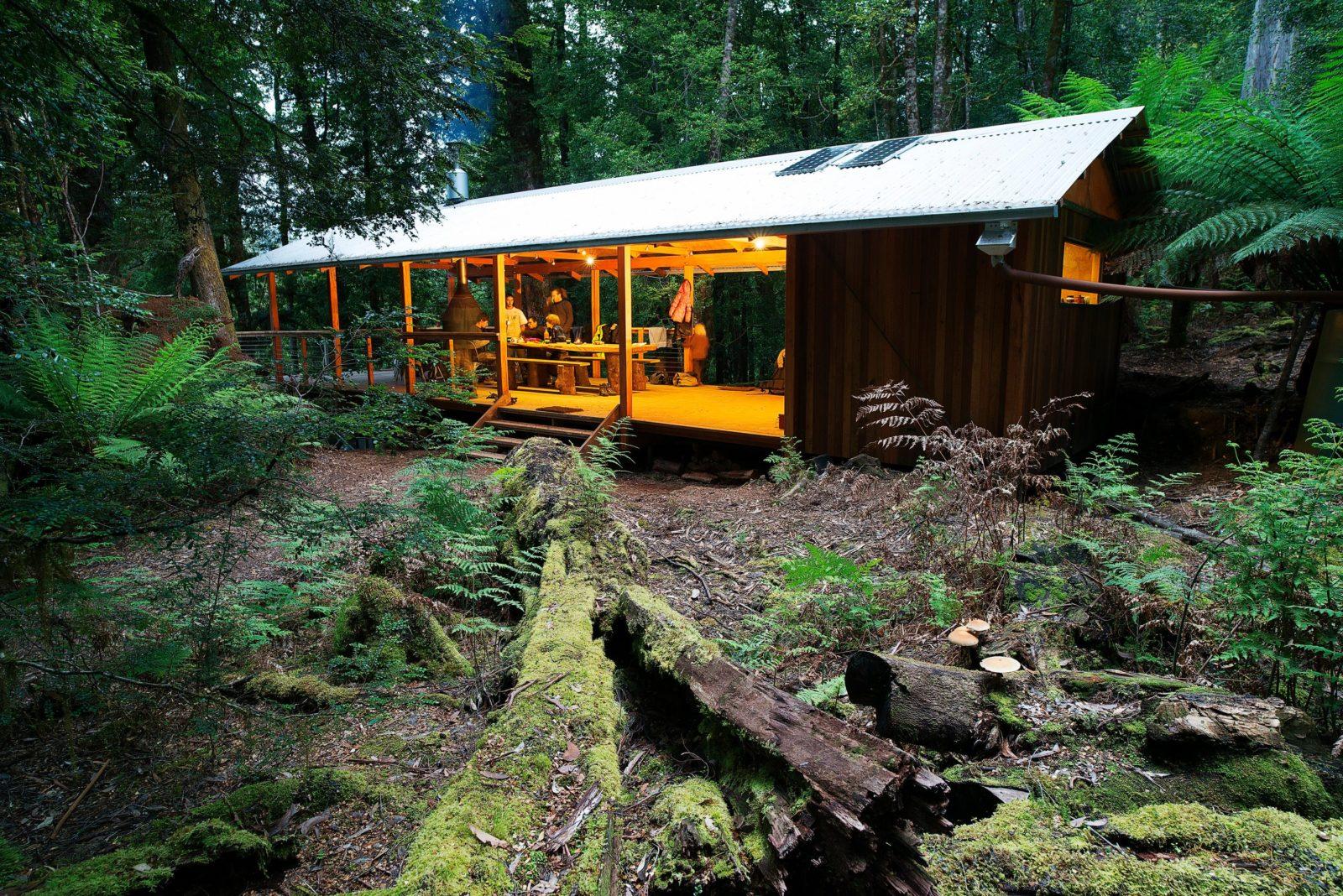 Tiger Ridge base camp in the takayna/Tarkine rainforest