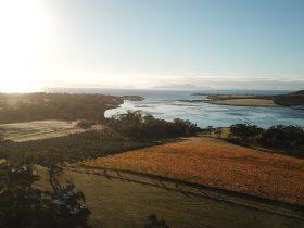 Autumn aerial of Boomer Creek Vineyard
