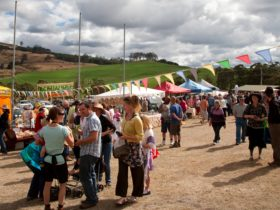 BCFM Market Day