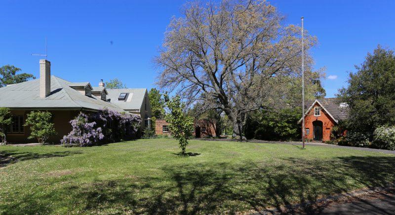 Historic property Evandale Tasmania. Noble elm tree