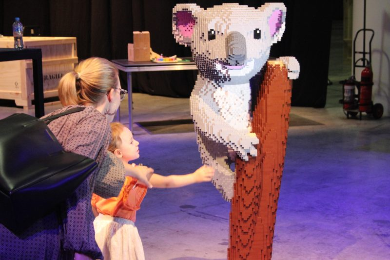Koala Brickman