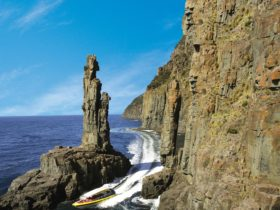 Bruny Island Cruises at The Monument