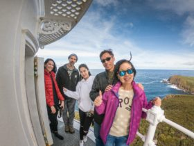 Cape Bruny, Lighthouse Tour, Bruny Island