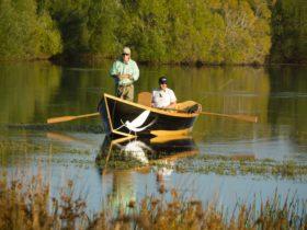 Dry fly fishing on Brumby's Creek, Northern Tasmania