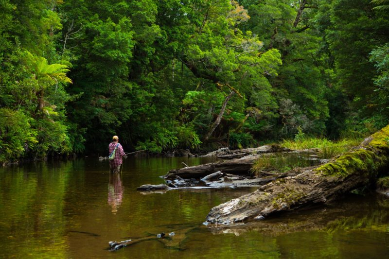 Wilderness fly fishing in Southern Tasmania