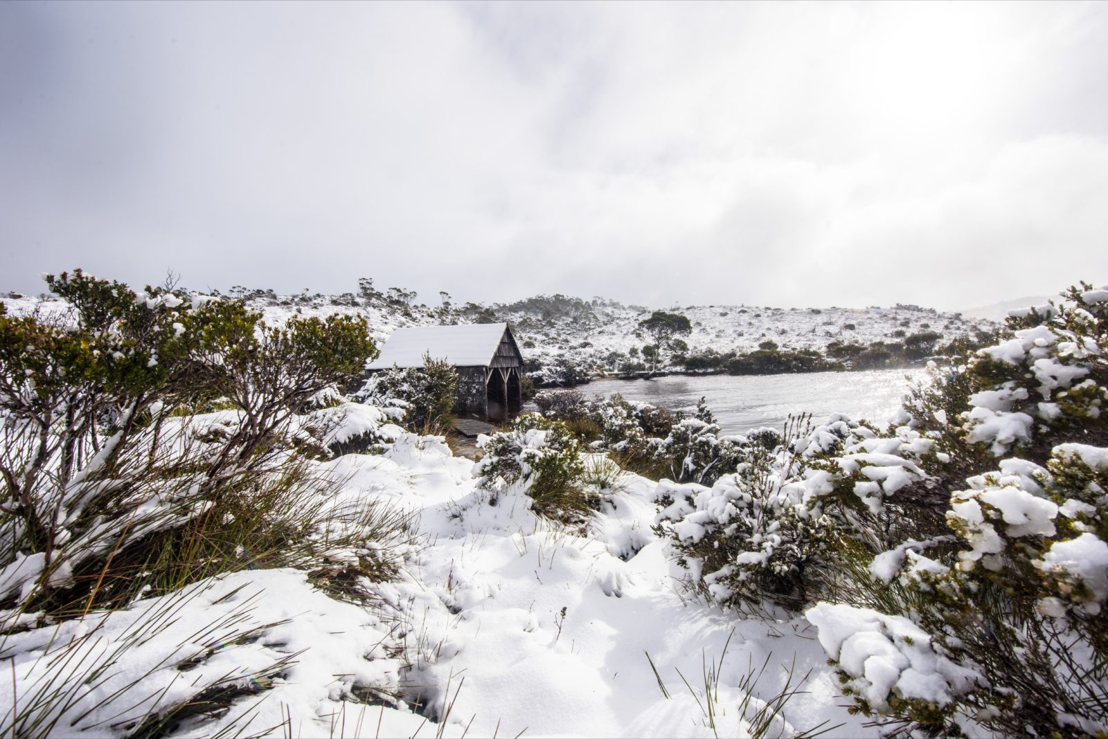 Christmas in July at Cradle Mountain Hotel