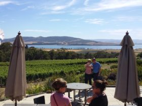 Coal River Valley winery and water view