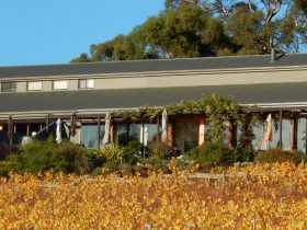 Coal Valley Vineyard Cellar Door