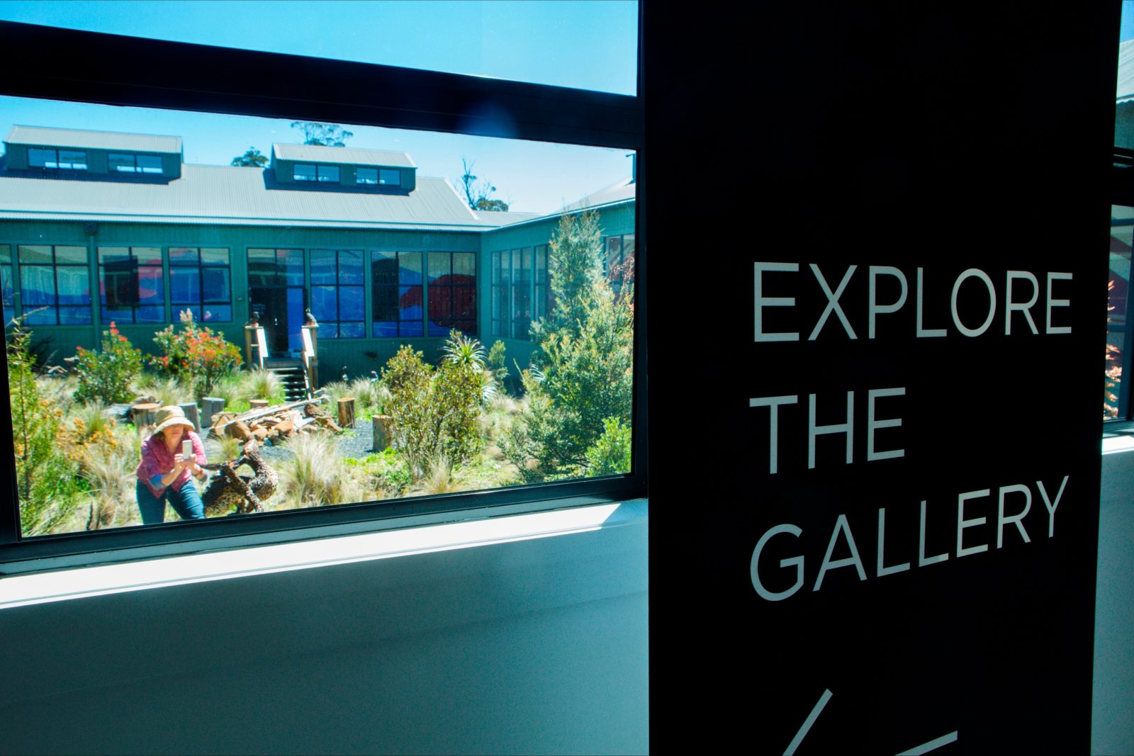 Explore the gallery