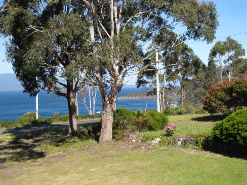 Views from Veranda 2
