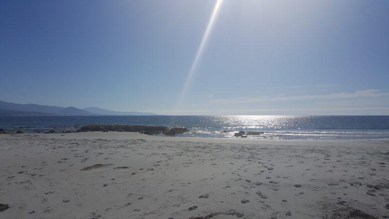 Redbill Beach