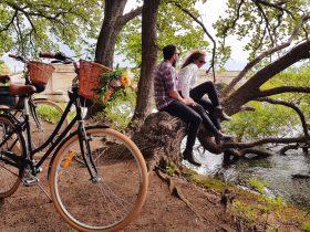 Dinki –Explore one of Tasmania's finest heritage villages on our deluxe vintage bikes.