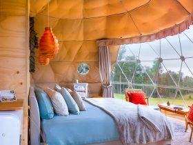 Domescapes geodesic dome glamping living room