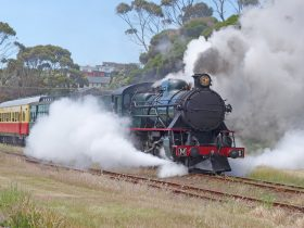 Steam Locomotive M4 Leaving Don Junction