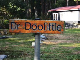 Dr Doolittle - a Doo Town shack