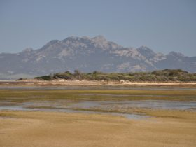Long Point a tidal salt marsh Flinders Island Tasmania