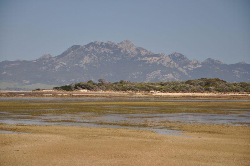 Long Point a tidal salt marsh Flinders Island Tasmania
