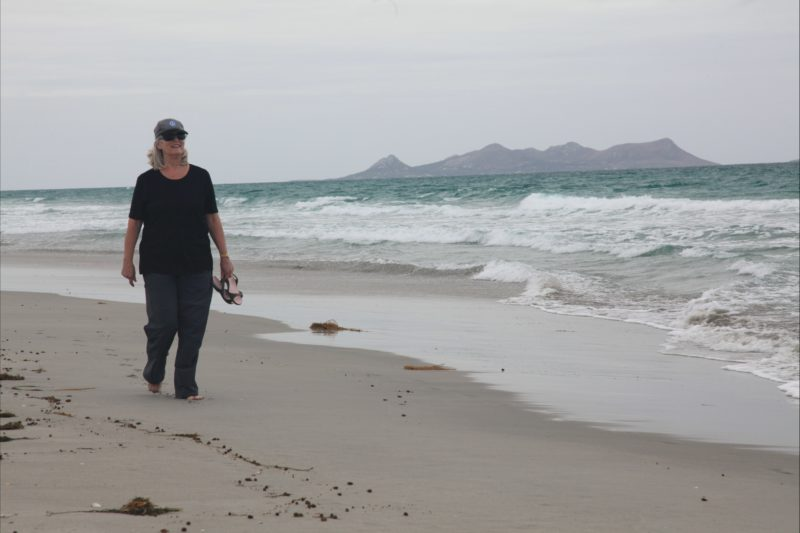 Walking the east coast beaches from Camerons Inlet Flinders Island Tasmania