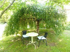 Enjoy different areas in the garden