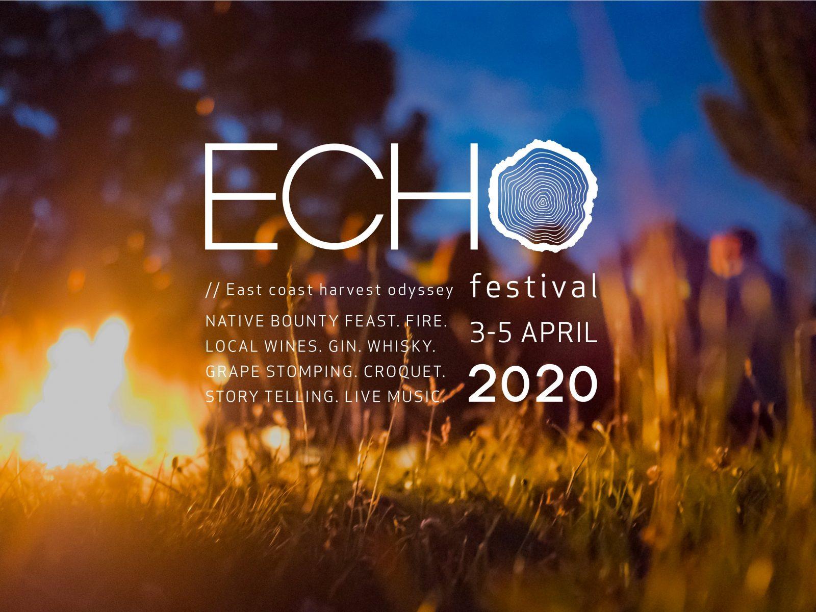 ECHO Festival - campfire