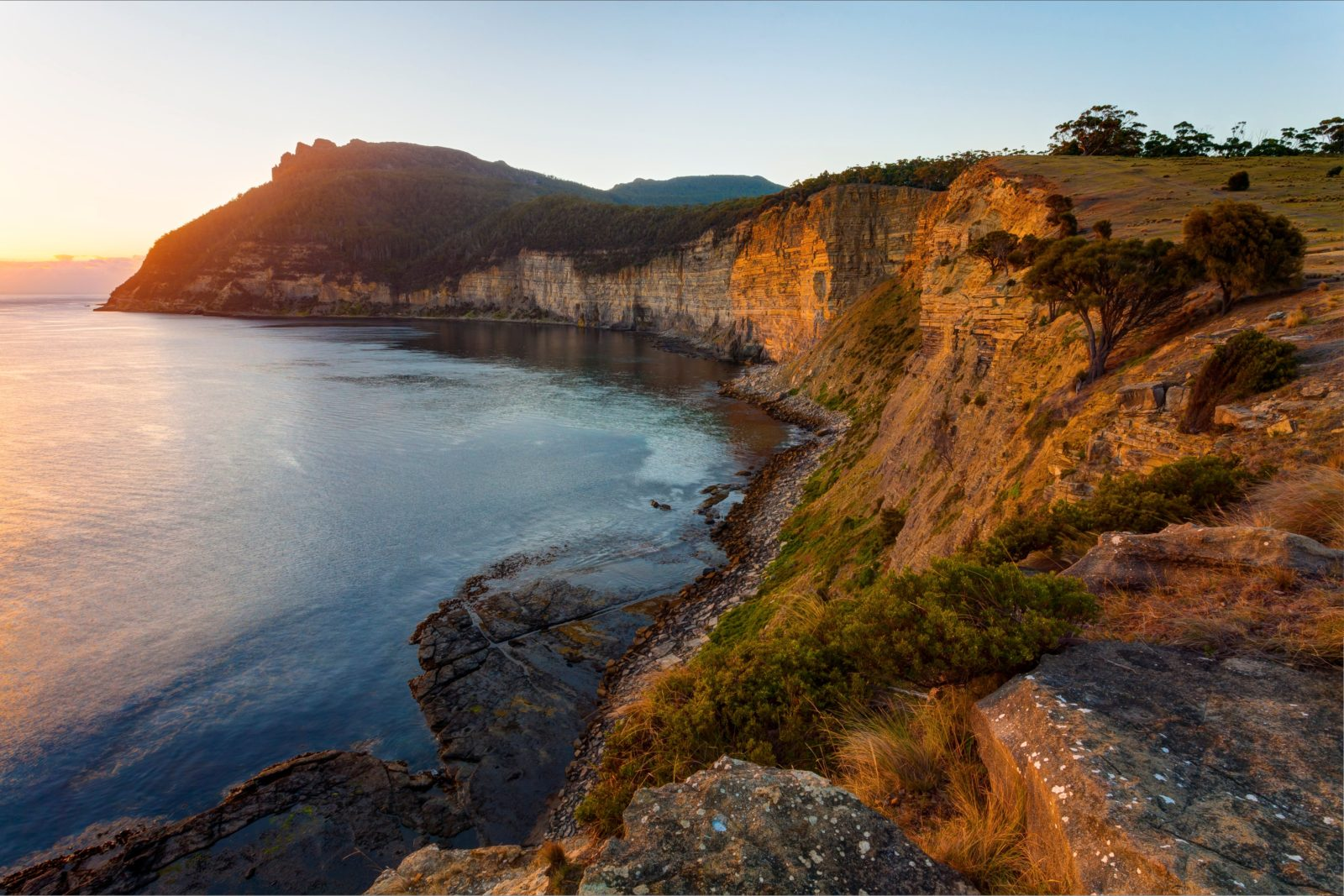 Fossil Cliffs Maria Island National Park