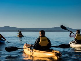 Paddling Port Esperance Bay