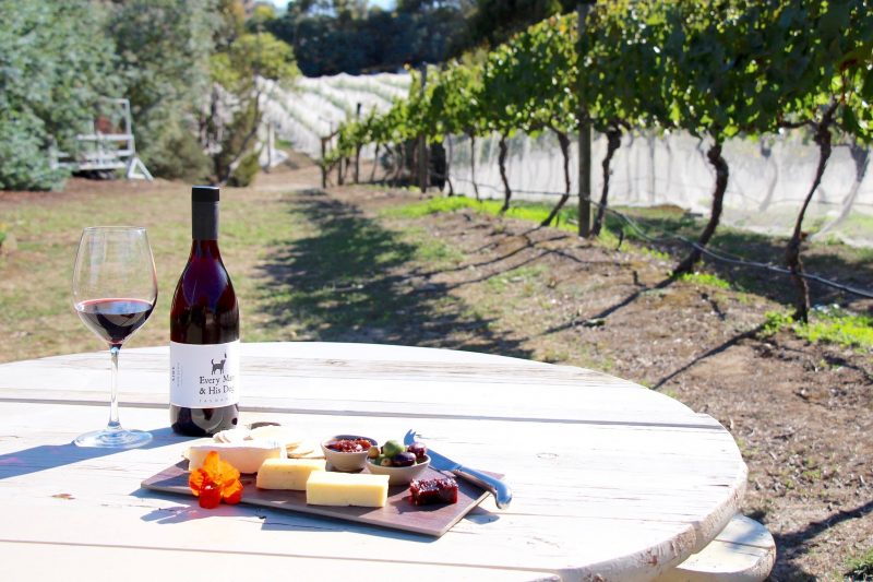 Wine and cheese platters are available from the Cellar Door at Every Man and His Dog Vineyard