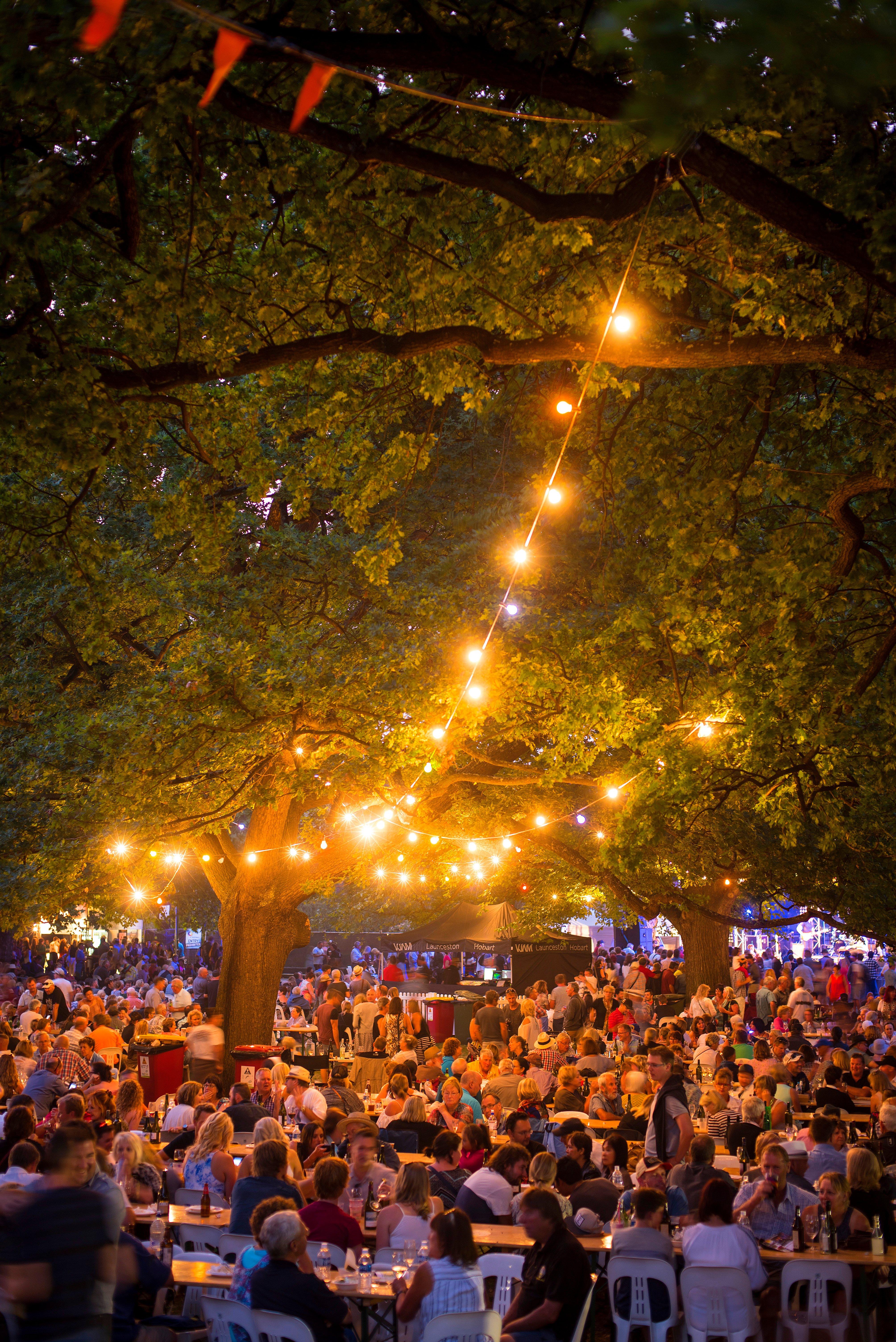 Evening crowd and garland tree lighting