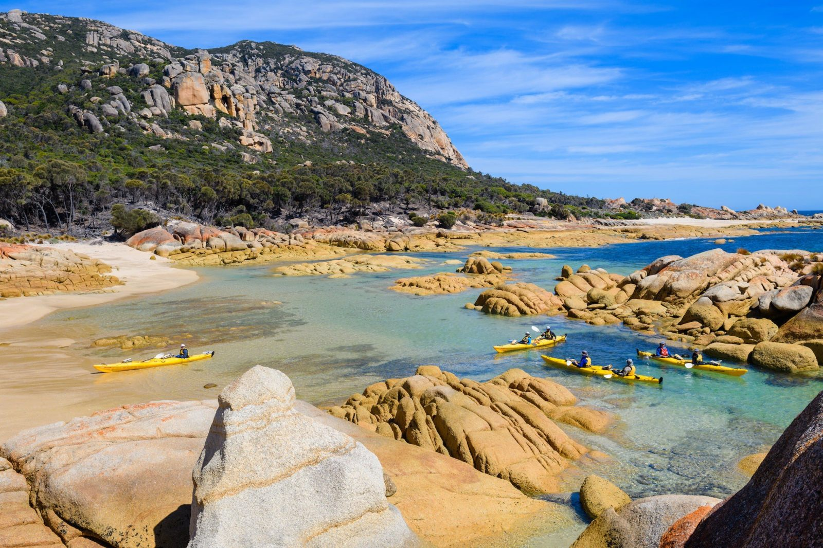 Kayakers near beach on Flinders Islane