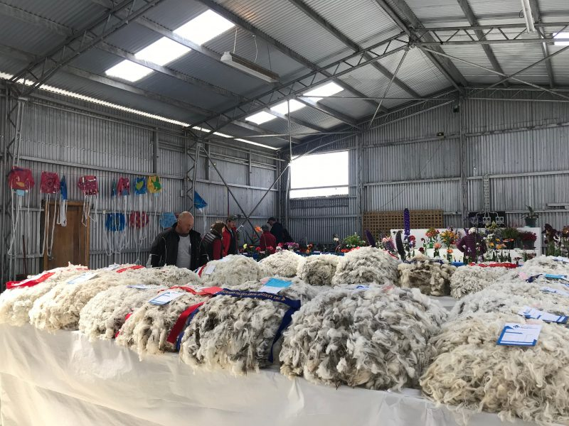 Flinders Island Show 2019
