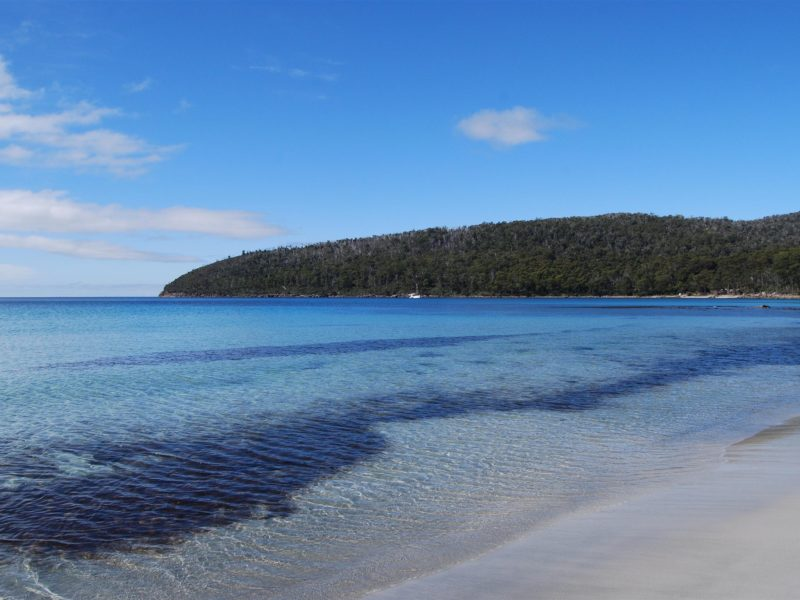 Crystal clear waters of Fortescue Bay