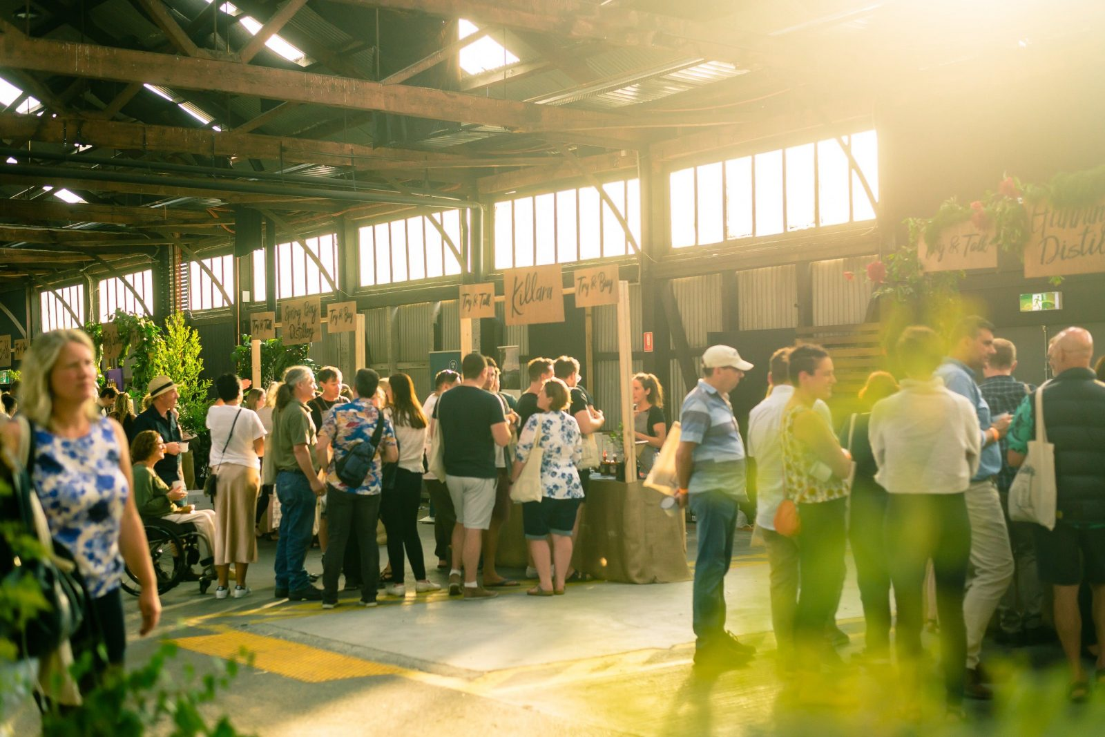 Sample a variety of gins from over 27 Tasmanian gin distilleries