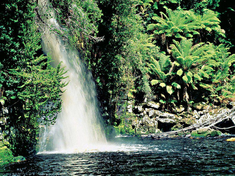 Gordon River, Franklin - Gordon Wild Rivers National Park