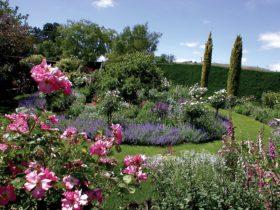 Prospect Villa & Garden