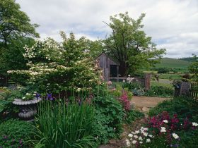 Hamilton's Cottage Collection and Country Gardens - Victorias Cottage