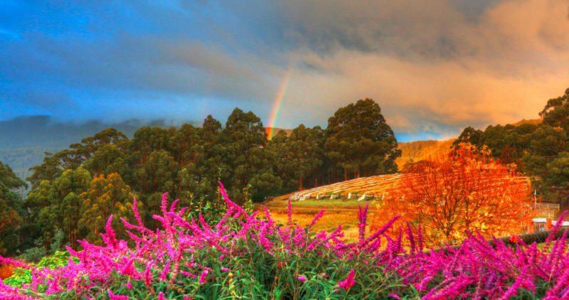 Views and rainbows