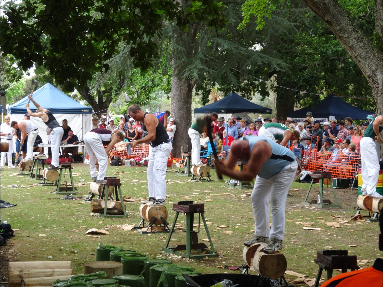 Wood Chopping at Henley-on-Mersey