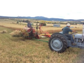 A machine that is drawn by a tractor that makes sheaths of oats from the cut crop