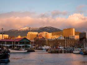 Hobart's iconic Mt Wellington