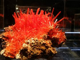 Stunning Crocoite from the Adelaide Mine, Tasmania