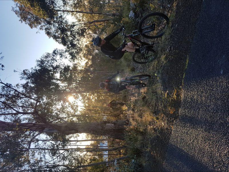 Mountain bike riding early morning Hbart