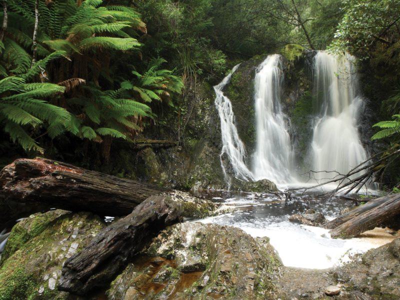 Hogarth Falls Walk